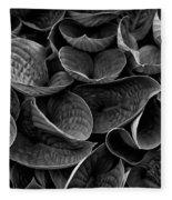 Textures And Tones Fleece Blanket