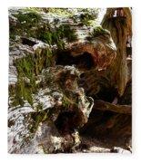 Textures On A Giant Sequoia Fleece Blanket