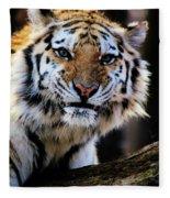 That Tiger Look Fleece Blanket