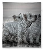 The 3 Amigos Fleece Blanket