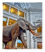 The African Bush Elephant In The Rotunda Of The National Museum Of Natural History Fleece Blanket