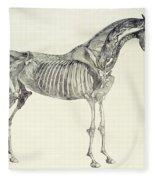 The Anatomy Of The Horse Fleece Blanket