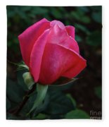 The Beautiful Rose Bud Fleece Blanket