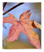 The Beauty Of Fall Fleece Blanket