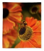The Bee And The Helenium Fleece Blanket