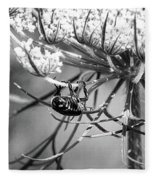 The Beetle Acrobat Black And White Fleece Blanket