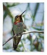 The Bird In The Foil Mask -- Anna's Hummingbird In Templeton, California Fleece Blanket