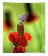 The Butterfly And The Coneflower Fleece Blanket