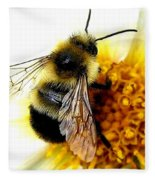 The Buzz Fleece Blanket