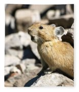 The Call Of The Pika Fleece Blanket