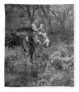 The Calm Of A Moose Bw Fleece Blanket