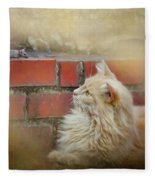 The Cat And The Mouse Fleece Blanket