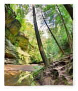 The Caves And Trail At Old Man's Cave Hocking Hills Ohio Fleece Blanket