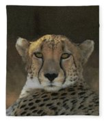The Cheetah Fleece Blanket