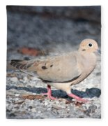 The Chipper Mourning Dove Fleece Blanket