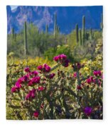 The Colorful Desert  Fleece Blanket