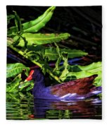 The Common Gallinule Fleece Blanket