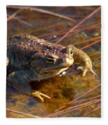 The Common Toad 1 Fleece Blanket