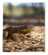 The Common Toad 4 Fleece Blanket
