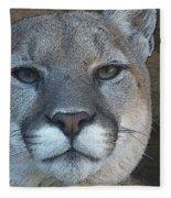 The Cougar 3 Fleece Blanket