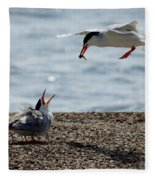 The Courtship Feeding - Series 1 Of 3 Fleece Blanket