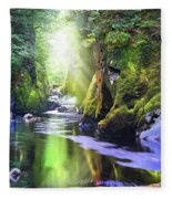 The Fairy Glen Gorge River Conwy Fleece Blanket
