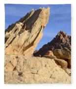 The Fang Fleece Blanket