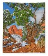 The Ferruginous Earth Of The Rocky Mountain West Fleece Blanket