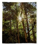 The Forest Sun Fleece Blanket