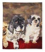 The Four Amigos Fleece Blanket