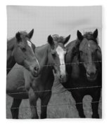 The Four Horses Fleece Blanket