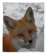 The Fox 4 Fleece Blanket
