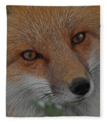 The Fox 4 Upclose Fleece Blanket