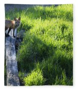 The Fox Fleece Blanket