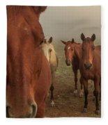 The Gauntlet - Horses Fleece Blanket