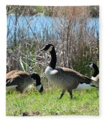 The Geese Are Back Fleece Blanket