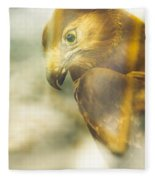 The Glass Case Eagle Fleece Blanket
