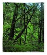 The Glorious Green Fleece Blanket