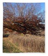 The Green Grass Road Fleece Blanket
