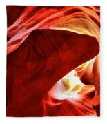 The Heart And The Dog Fleece Blanket