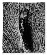 The Hermit In The Woods Fleece Blanket