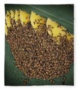 The Hive Fleece Blanket