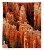 The Hoodoos In Bryce Canyon Fleece Blanket