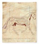 The Horse's Trot Revealed Fleece Blanket
