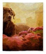 The Labrador Fleece Blanket