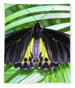 The Largest Butterfly In The World Fleece Blanket