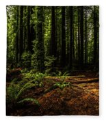 The Light In The Forest No. 2 Fleece Blanket