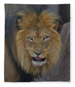The Lion Dry Brushed Fleece Blanket