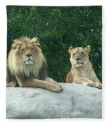 The Lions Fleece Blanket