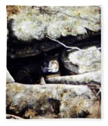 The Lookout Lynx Fleece Blanket